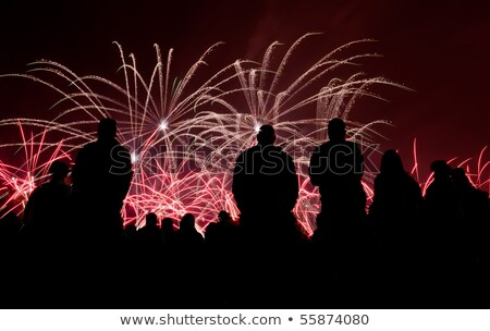 big fireworks with silhouetted people in the foreground watching stock photo © deymos