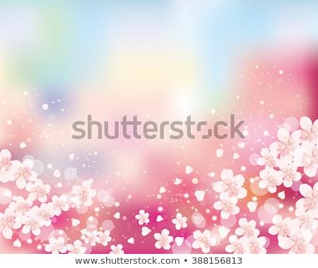 Ciel Pâques printemps feuille jardin Photo stock © carodi