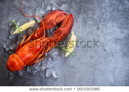 омаров Cartoon свежие здорового морепродуктов иллюстрация Сток-фото © czaroot