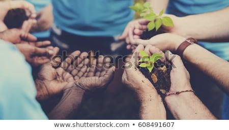 Growing Community Group Stock photo © Lightsource