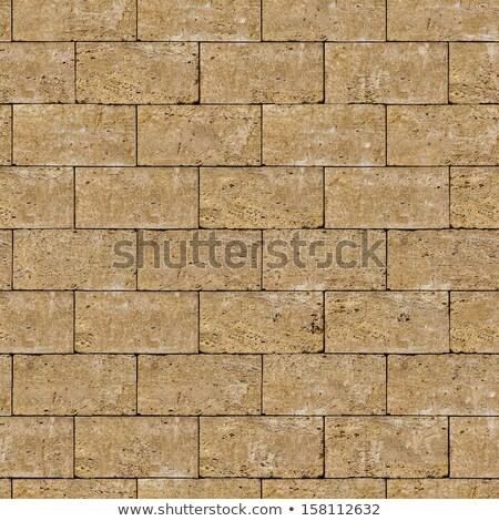 Seamless Tileable Texture of Coquina Wall. Stock photo © tashatuvango