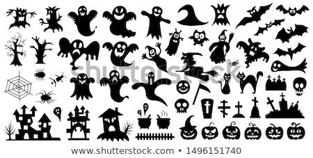 Collection of Halloween elements Stock photo © kariiika