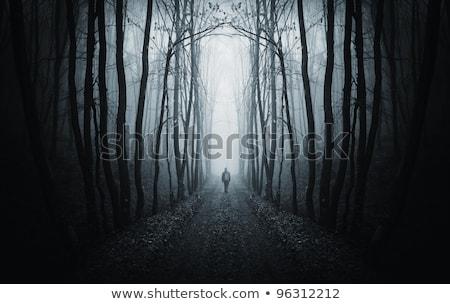 Stok fotoğraf: Yol · garip · karanlık · orman · mavi · ağaç