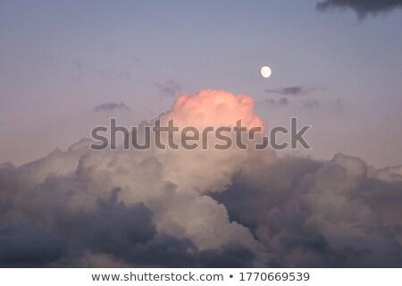 parfait · blanche · pelucheux · céleste · nuages · ciel · bleu - photo stock © anna_om