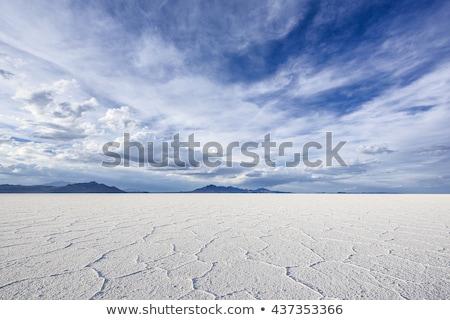 White Salt Flats Stock photo © jkraft5