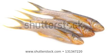 Peixe subcontinente indiano branco jantar vermelho cozinhar Foto stock © bdspn