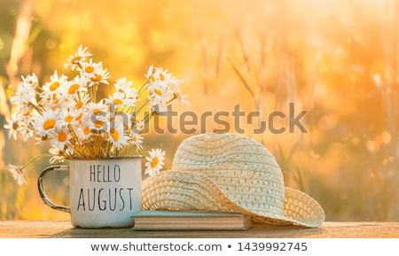 August Stock photo © itmuryn