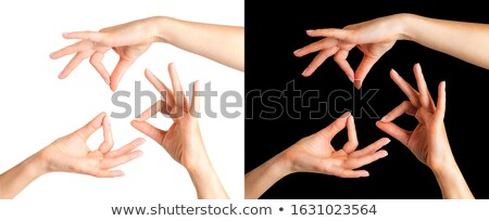 Buddhist Gestures Dharmachakra Stock photo © jackethead