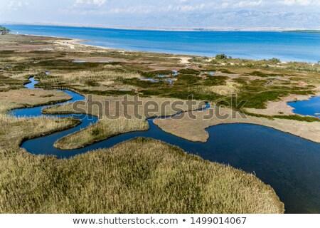 Wapień krajobraz tropikalnych wyspa Filipiny Zdjęcia stock © smithore