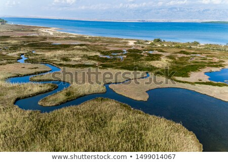Limestone coastline landscape Stock photo © smithore