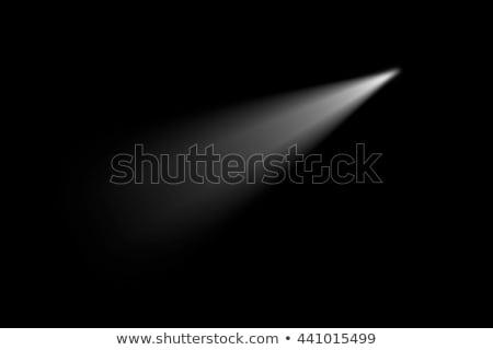 Light Beam from Electric Flashlight Stock photo © diabluses