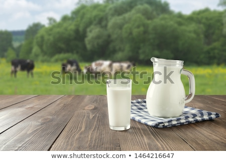 Cow on grass meadow vintage Stock photo © sweetcrisis