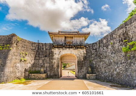 Puerta castillo edificio vintage historia ruinas Foto stock © shihina