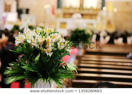 Manila catedral interior Filipinas católico edifício Foto stock © travelphotography