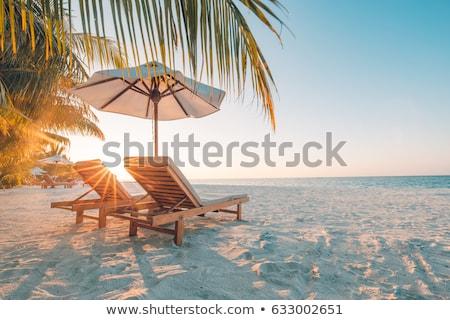 Férias de verão Bahamas praia pessoa cartão Foto stock © stevanovicigor
