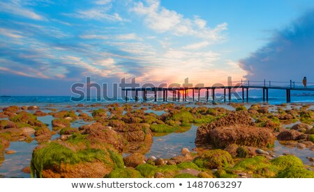 Wooden dock covered by moss at a calm lake Stock photo © Mps197