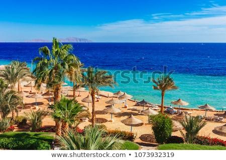 Tengerpart luxus hotel Egyiptom égbolt víz Stock fotó © master1305