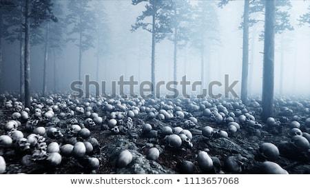 Bosques corte madera primer plano Foto stock © exile7