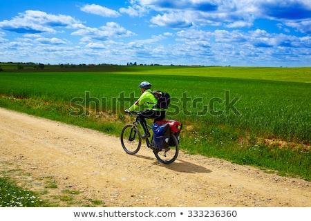 cereal · campos · maneira · natureza · paisagem - foto stock © lunamarina
