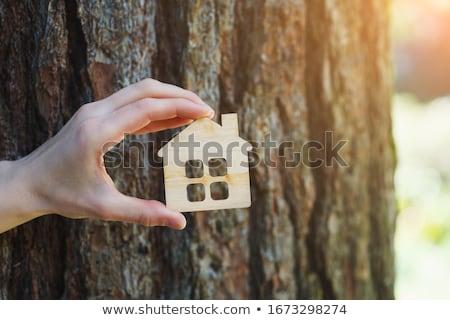 casa · seguridad · negocios · casa · tecnología · dedo - foto stock © stevanovicigor