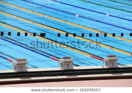 piscine · illustration · sport · verres · costume · drôle - photo stock © paha_l