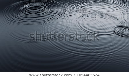 surface water with the ripples Stock photo © Paha_L