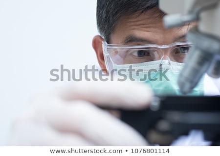 nukleáris · teszt · piros · pecsét · fehér · felirat - stock fotó © dolgachov