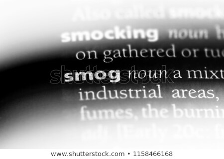 Definition of the word Smog in a dictionary Stock photo © Zerbor
