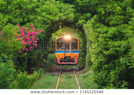 thai railway stock photo © smuay