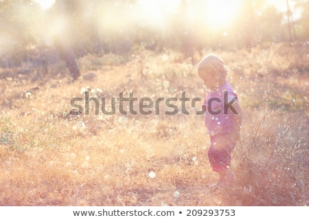 Kid in nature with lens flare in background Stock photo © zurijeta