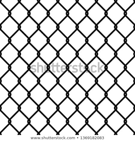 Pattern Fence Stock photo © alrisha