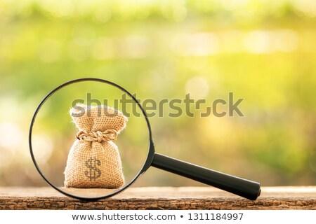 gazdaság · gazdasági · siker · pénzügyi · csoport · zöld - stock fotó © lightsource