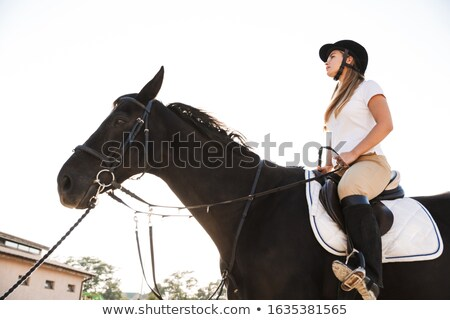 Amazing young cowgirl sitting on horse outdoors Stock photo © deandrobot