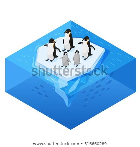 面白い · 氷 · にログイン · ui · ゲーム · 実例 - ストックフォト © curiosity