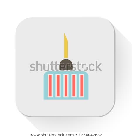 Medical Needle Flat Icon Stock photo © ahasoft