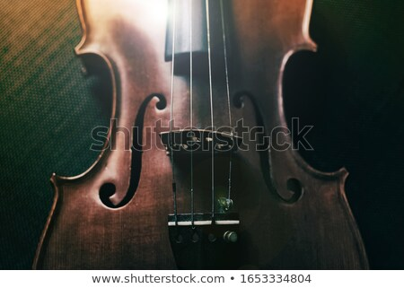 Stock photo: Old violin on a black background