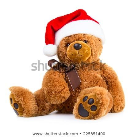テディベア クリスマス 帽子 ブラウン 赤 白 ストックフォト © compuinfoto