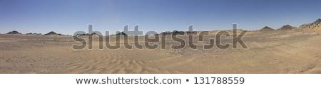 Stock fotó: Panoráma · homokos · sivatag · stilizált · tájkép · halott