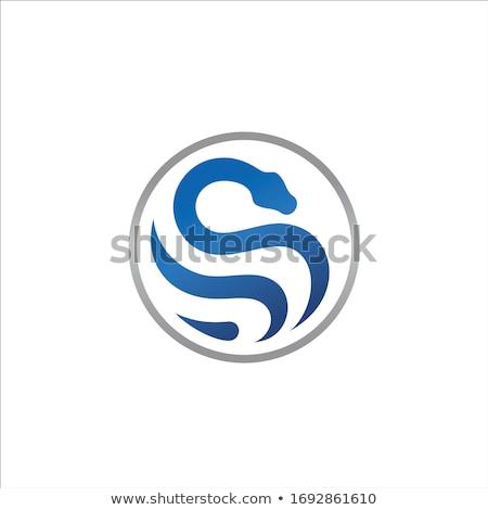 Zöld kígyó alakú levél vektor illusztráció Stock fotó © cidepix
