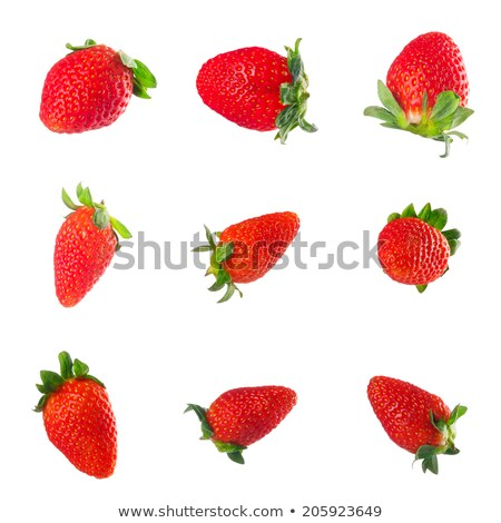 Foto stock: Grupo · aislado · blanco · naturaleza · hoja · frutas