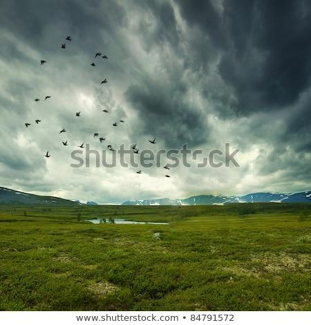 Stok fotoğraf: Bahar · dağlar · fırtınalı · gökyüzü · manzara · son