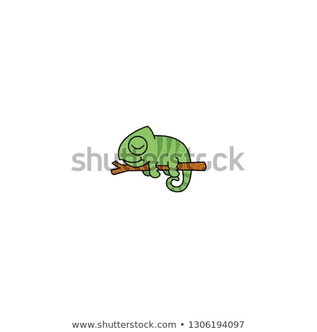 Chameleon Cartoon Character Mascot Design stock photo © ridjam