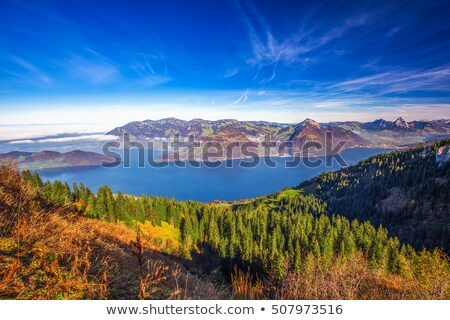 Lake Lucerne and surrounding alpine peaks view Stock photo © xbrchx