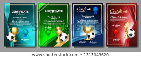 soccer game award set vector football ball golden cup modern soccer tournament design for sport stock photo © pikepicture