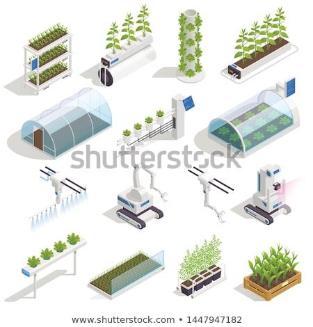 loja · on-line · ícones · vetor · trabalhar · grade - foto stock © jossdiim