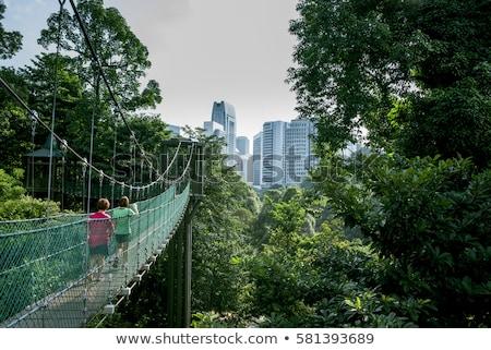 Suspension bridge in the park in Kuala Lumpur, Malaysia Stock photo © galitskaya