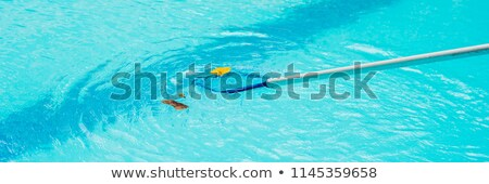 Cleaning swimming pool with cleaning net in the morning BANNER, long format Stock photo © galitskaya
