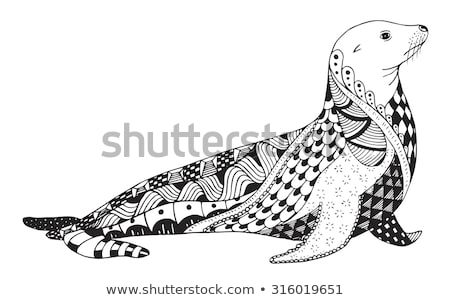 hand drawn sea lion vector illustration in sketch style stock photo © arkadivna