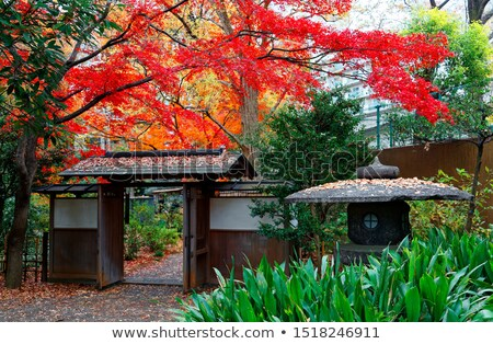 Red gate and autumn colours of beautiful gardens Stock photo © lovleah