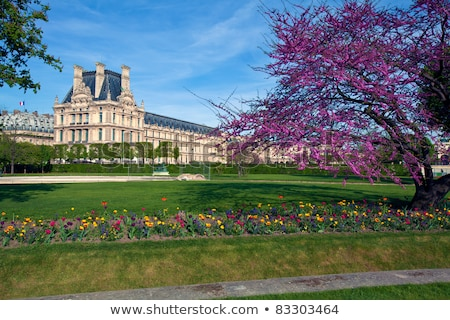 tuileries garden paris stock photo © neirfy